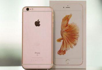 IPhone różowy: co nowego, opis modelu