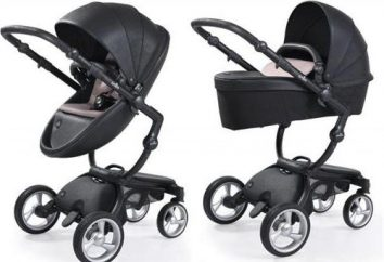 Carrinhos de bebé Mima: descrição, características e descrição, pontos de vista e opiniões