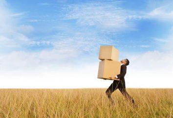 Cómo transferir un archivo grande a través de Internet: las principales formas