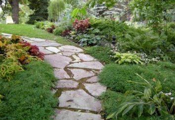 Forma do produkcji ścieżek ogrodowych: wskazówki dotyczące wdrażania