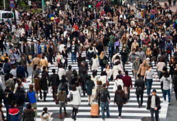 población Petersburgo: tamaño, composición, distribución,