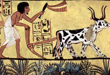 recursos recreativos y agroclimáticas – es … problemas de recursos agro-climáticas