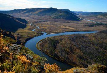 Il livello del Amur Khabarovsk nei pressi è in rapida crescita