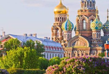 Petersburg: galeria, która jest warta odwiedzenia. Zdjęcia i opinie
