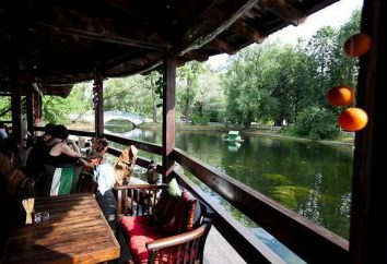 """Verbringen Sie einen romantischen Tag und Abend zusammen mit einem Restaurant """"Schwanensee""""!"""