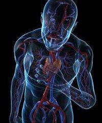 Infarctus: Hypoxie symptômes et traitement