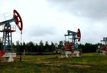 Serov Mechanical Plant: an der Spitze der Technologie und Fortschritt