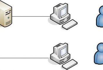 LAN przez Internet z własnymi rękami