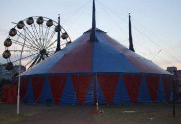 Circus Dybenko – zabawy dla dzieci i dorosłych