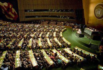 Dlaczego front ONZ machając flagami prawie wszystkich krajów na świecie?