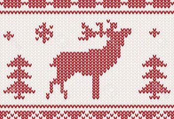 Wzory na drutach: konfekcja własnymi rękami