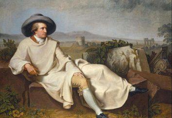rueda de color de Goethe y su uso