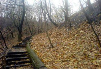 Kijów, Bald Mountain: Historia i zdjęcia