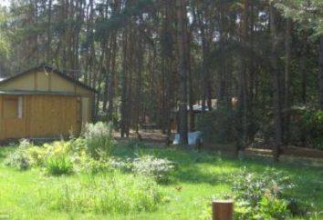 """Il centro ricreativo """"Foresta del castello"""" (Samara): Descrizione, recensioni viaggiatori"""
