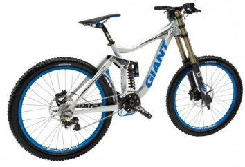 Jaka jest najlepsza marka roweru?
