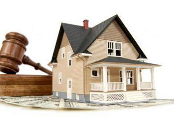 Nieruchomości – co to jest? Definicja i rodzaje własności: i ruchomości, państwowe, samorządowe, korporacyjne i osobiste