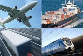 Trasporti – che cos'è? Tipi e società veicolo