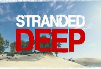 Wie lebendig, einmal in der Mitte des Pazifiks zu bleiben? Stranded Deep: Systemanforderungen und eine Übersicht über das Spiel