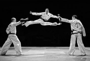 Taekwondo – che cosa è? Breve descrizione e storia