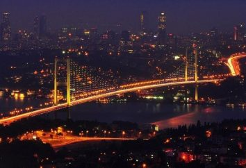 Istanbul Ponte sul Bosforo e Galata