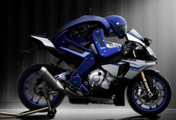 Spełnienia tego motorówka – Robot-jeździec na Yamaha