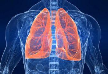 Polmonite a sinistra del lembo sinistro: sintomi e trattamento