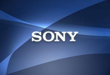 Relógios inteligentes Sony: revisão, especificações. Inteligente relógio Sony SmartWatch 2: preços e opiniões
