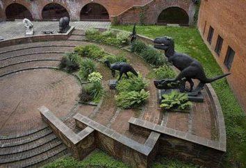 Neuer Dinosaurier-Park in Moskau bei ENEA