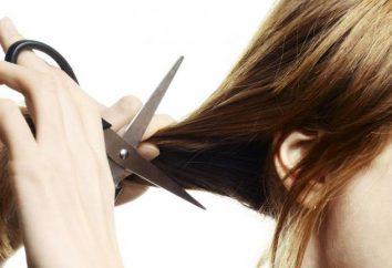 Interpretação dos sonhos: qual é o seu cabelo cortado?