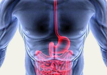 Une bonne alimentation pour la gastrite et la pancréatite