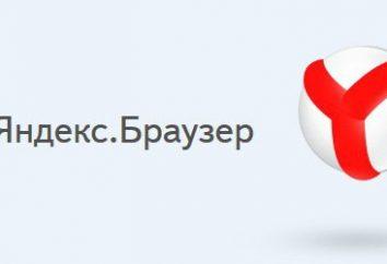 """Slow """"Yandex Browser"""" – co robić? Wirusy komputerowe i programy antywirusowe. Jak czyścić """"Yandex Browser"""""""