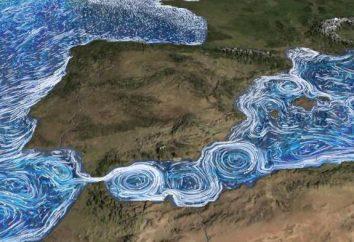 Una corrente calda è … Le principali caratteristiche delle correnti. Le correnti calde più famose