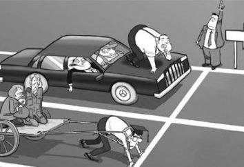 Struktura społeczna społeczeństwa – to siedlisko każdy