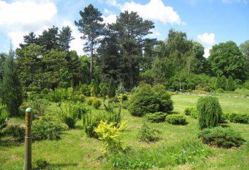 Jardin botanique de Kaliningrad: opération, photos, site web officiel et comment obtenir