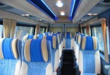 """Minibus """"Mercedes Sprinter"""" pasażer"""