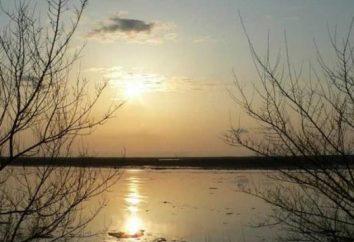 Amur wędkarstwo – niezapomniane przeżycie!