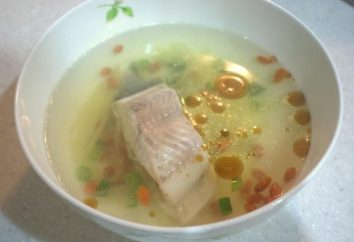 Come zuppa cotta di pesce di fiume – piccole e grandi