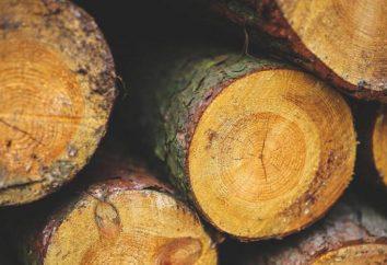Znaczenie drewna, składu, właściwości, cechy i struktury. Drewno – co to jest?