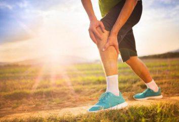 Häufige Anzeichen von Verletzungen, Fraktur und Luxation, Diagnostik und Erste-Hilfe