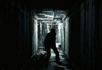 Problemi di The Evil Within: come rimuovere le barre nere e le restrizioni di sollevamento FPS