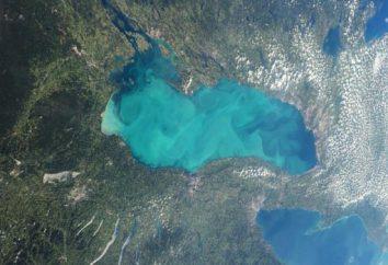 Lago Ontario y su ecosistema