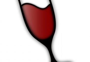 Installazione e configurazione di base per il vino su giochi per Linux: caratteristiche e raccomandazioni