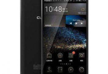 Teléfono inteligente Cubot S Nota: opiniones, especificaciones