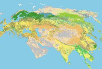 Eurasia – el continente que lava 4 Océano