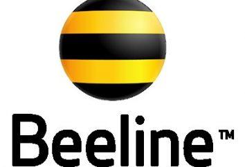 """""""Beeline"""": """"Todo incluido"""". """"Todo Incluido L"""" tarifa: comentarios"""