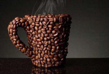 ¿Sabe usted cómo hacer café en Turku en casa?