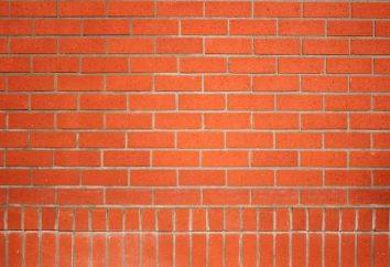 Średnia wielkość czerwonej cegły
