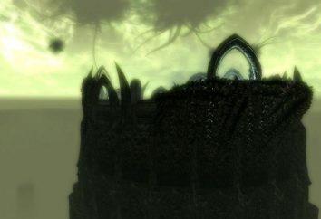 """passaggio completo """"Skyrim"""": """"Nella parte superiore del apocrifi"""""""