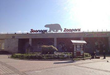 """Leningrad Zoo na stacji metra """"Gorkiego"""""""