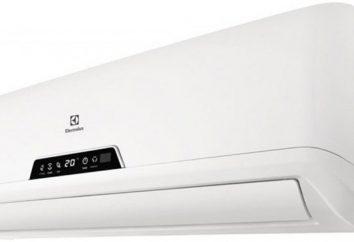 """""""Electrolux"""": aparelhos de ar condicionado. Tipos, características e comentários"""